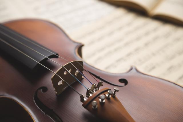 Први солистички концерт виолинисте Михаила Радовића