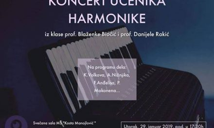 Концерт ученика хармонике
